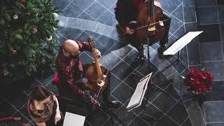 J.S. Bach - Världens frälsare kom här