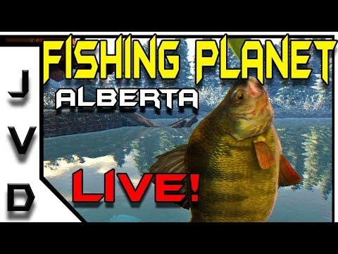 Fishing Planet Live! | Fishing White Moose Lake in Alberta Canada