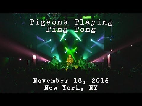 Pigeons Playing Ping Pong: 2016-11-18 - New York, NY [4K]