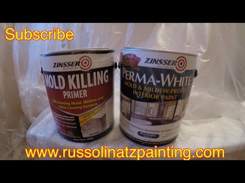 how-to-kill-mold-and-mildew-stains-on-a-shower-ceiling-(part-4)---zinsser-perma-white