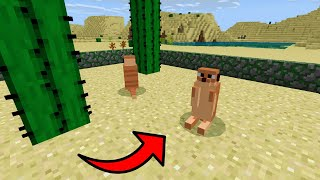 How To Make a MEERKAT Farm in Minecraft PE