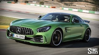 The Mercedes-AMG GT R is a SAVAGE BEAST!!!