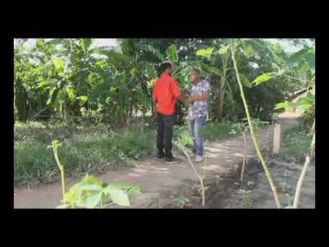 Download TIN WHITE  NA KINYAMBE KIJIJI KIMEKUWA