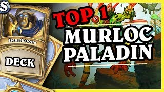 Mr Cogito TOP1 MURLOC PALADIN - Hearthstone Deck Std (K&C)