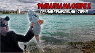 Рыбалка на озере Х прямая трансляция стрим с рыбалки с Виталием Дальке