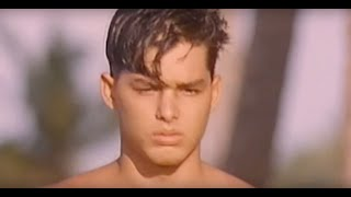 Baixar Pet Shop Boys - Domino Dancing