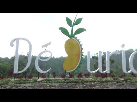 ada-apa-di-de-durian-park?-agrowisata-baru-di-wonosalam.