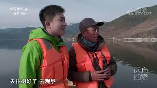 《远方的家》 20200519 行走青山绿水间 从高原到海滨| CCTV中文国际