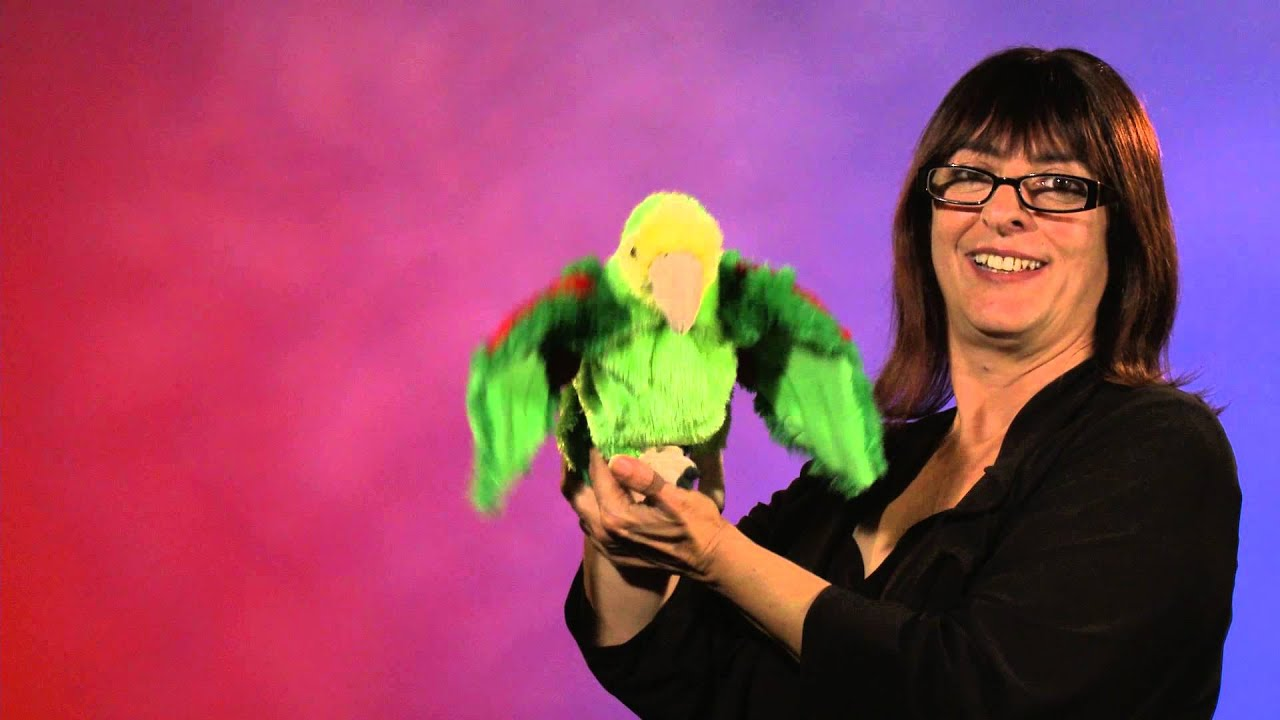 Folkmanis® Amazon Parrot Puppet Demo