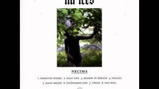 Lia Ices - Medicine Wheel