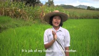Global Playground: Life at Home - My Rice Field