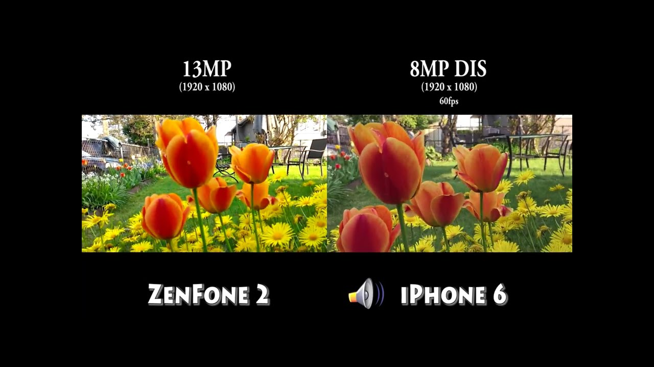 Iphone Objektiv Test