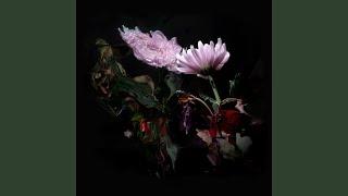 Cover images Loveless (Edit)