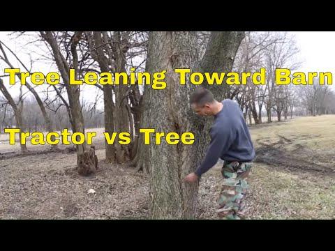 4x4 Kubota Tractor vs Tree--Barn at Risk!!