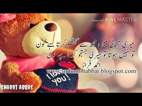 Best Romantic Urdu Poetry  Best Urdu Shayari Two Line  