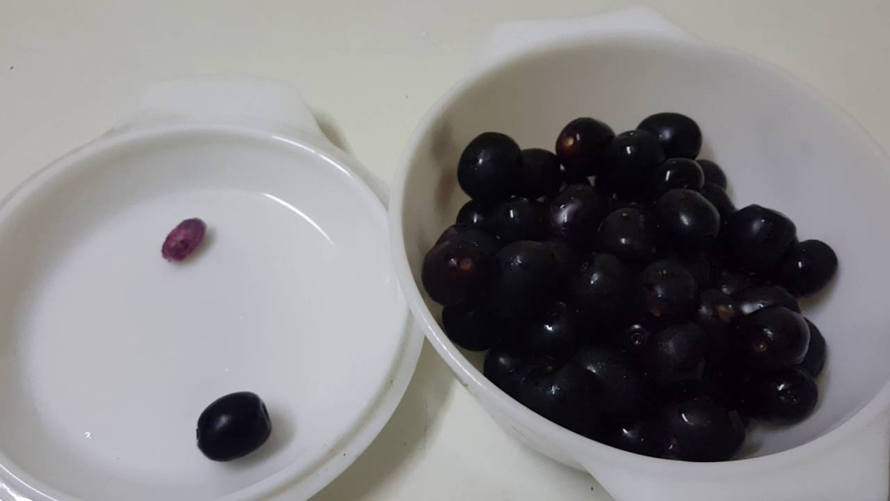 Jamun fruit | Indian Blackberry | Black Plum is Tangy Berry fruit (NON  Recipe) by CK