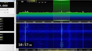 02 07 2019 Fana Broadcasting Corporation Radio Fana in Afan Oromo to EaAf 1056 on 6110 Addis Ababa a