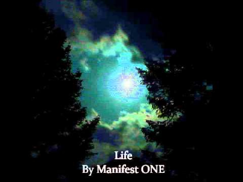 Life by Manifest ONE