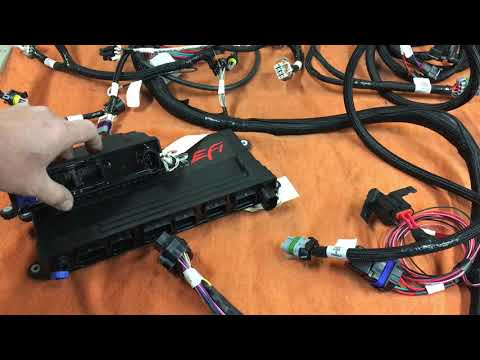 Holley HP Vs Dominator And Wiring