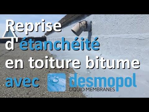 Comment Réparer Une étanchéité Bitume Avec Desmopol Polyuréthane