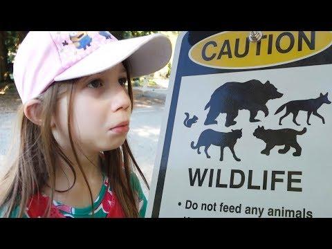 FICOU COM MEDO DO COIOTE NA TRILHA CANADENSE   DEER LAKE PARK- Vlog Ep.40