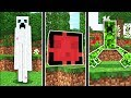 HOW TO SPAWN TOP SECRET MINECRAFT MOBS!