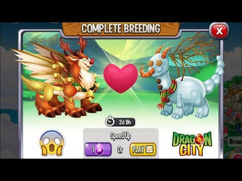 NEW BREEDING: Rudolph Dragon & Snow Man Dragon [EXCLUSIVE BREEDING DRAGON]
