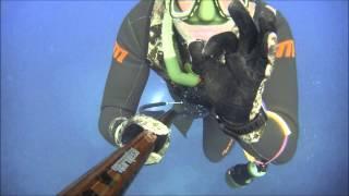 zıpkınla balık avı avcı balıklar