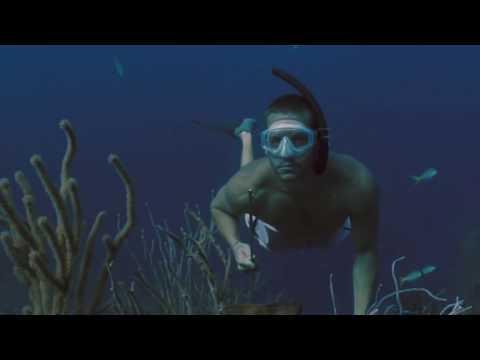 5 beeindruckende Dinge - die unter Wasser gefunden wurden!
