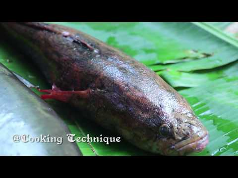 Wow! Unbelievable 2 Kg Fish In Big Fish Stomach - Cooking Fish With Secret Recipe