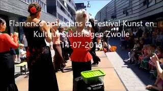 Flamenco optredens Stadshagen Festival Kunst en Kultuur in Zwolle