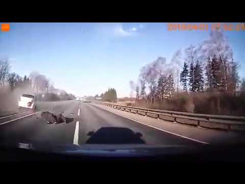 Момент смертельной аварии под Смоленском попал на видео