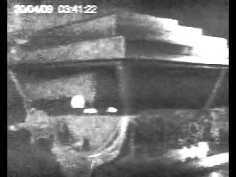 Смотреть видио ролик ленин поднял руку фото 161-669