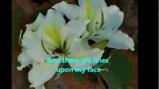 Beautiful in my Eyes by Joshua Kadison ( Lyrics )