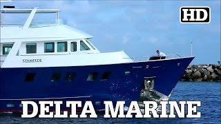 Delta Marine Explorer Yacht | STAMPEDE