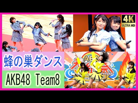 AKB48 チーム8 蜂の巣ダンス 総集編11連続一気見 Team8 【4K】 2018年5月~2020年2月 Hachi no Su Dance ライブ Live 벌집 댄스