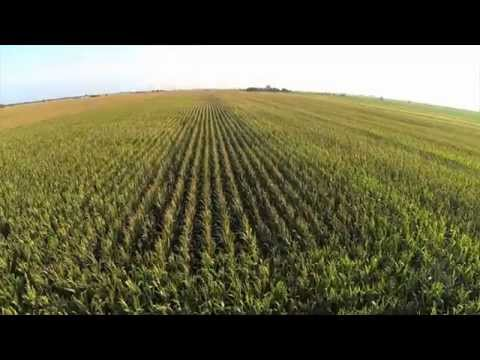 Drones Poised to Elevate Agricultural Efficiency