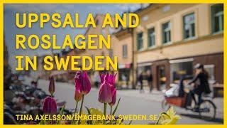 Uppsala and Roslagen in Sweden
