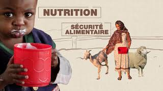 Programme mondial pour le contrôle et l'éradication de la Peste des petits ruminants
