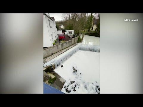 Welsh river turns white after milk tanker spill