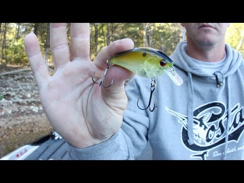 Jeff Sprague's 3 Key Baits