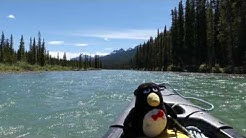 Canoeing the Bow River, Day 1/2
