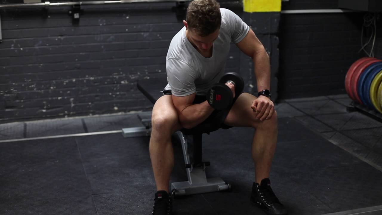 Seated Dumbbell Spider Curls Knee Supported Youtube