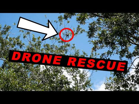 drone-mavic-air-crashed-in-a-tree---rescue-mission