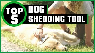 ✅  Best Dog Shedding Tool In 2019 | Which Is The Best Dog Shedding Tool? (Reviews & Buying Guide)