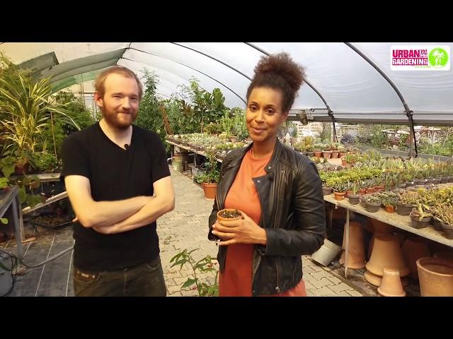 Alles über Stecklinge! Grace besucht das Blumencafé in Berlin