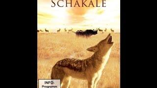 Schakale