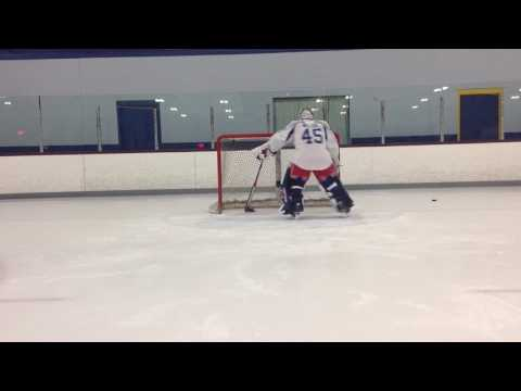 The Goalie Doctor  James Wilcox Lesson1
