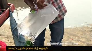 Presence of Coliform bacteria found in ice plants in Kozhikode ; Collector  ordered to close down