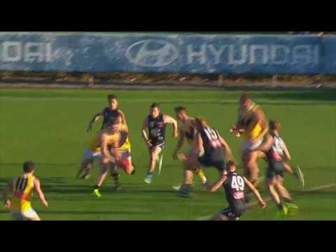 Round 9 Highlights: Northern Blues vs Werribee